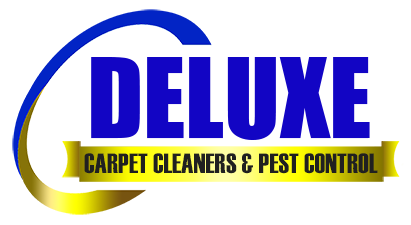 Deluxe Carpet Cleaners