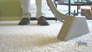north brisbane carpet cleaning service area