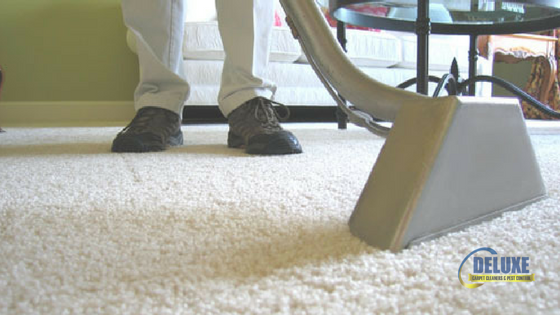 ningi carpet cleaning