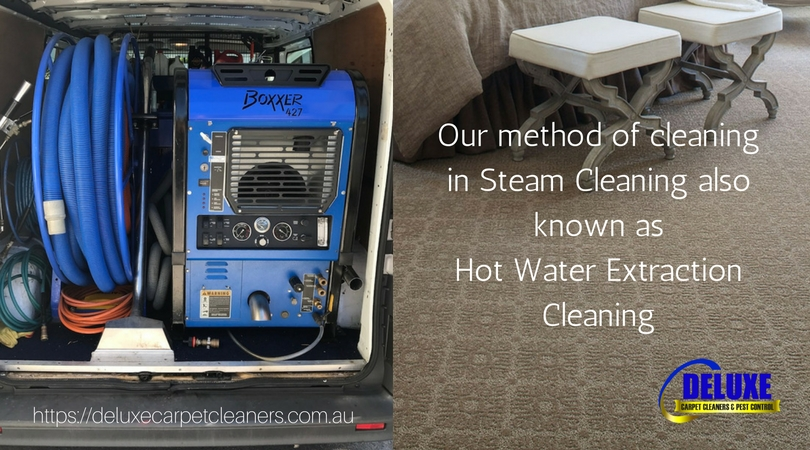 Carpet Steam Cleaning – Hot Water Extraction