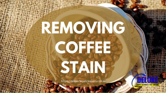 Removing Coffee Stains