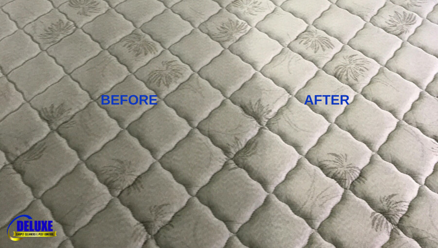 mattress cleaning north brisbane by Deluxe Carpet Cleaners