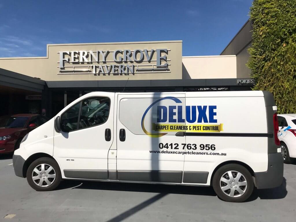 carpet cleaning ferny grove