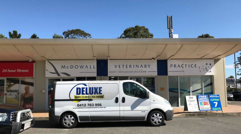 mcdowall carpet cleaning
