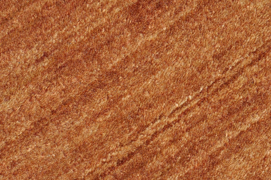 4 Basic Carpet Restoration Tips That You Need To Know